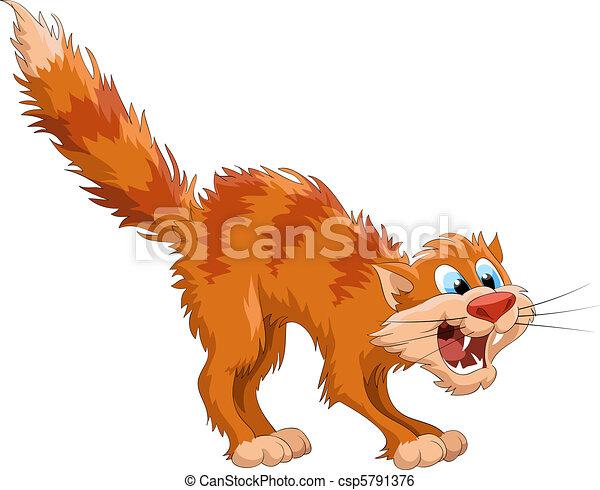 Red cat - csp5791376