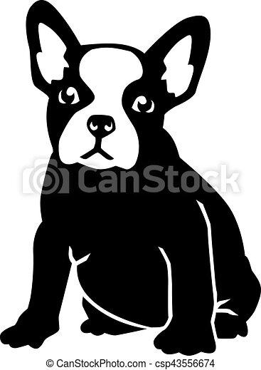Sitting French bulldog - csp43556674