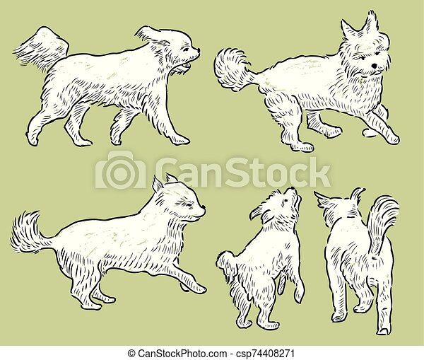 sketches of a playful terrier - csp74408271