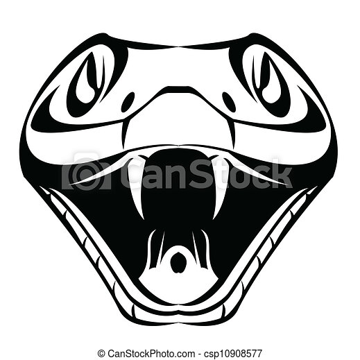snake head - csp10908577