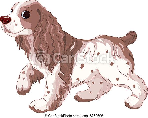 Spaniel dog - csp18762696