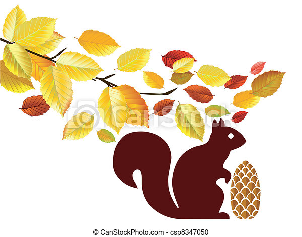 squirrels in the woods - csp8347050