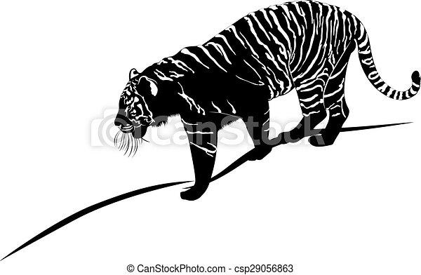 tiger - csp29056863