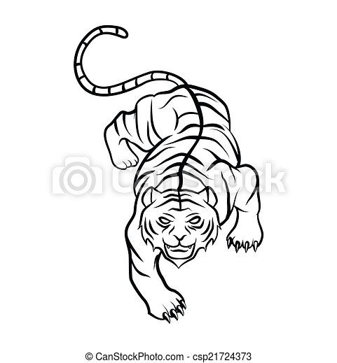 Tiger - csp21724373