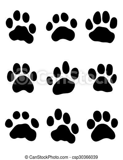tiger paw - csp30366039
