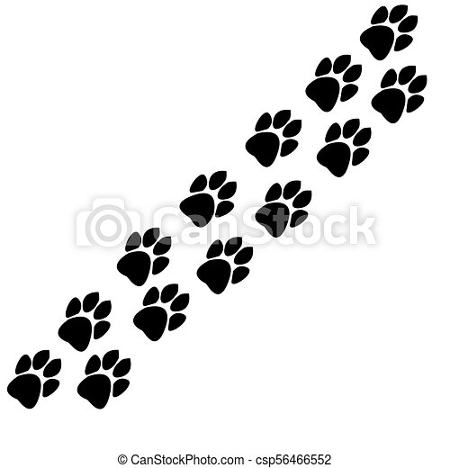 traces of animals track - csp56466552
