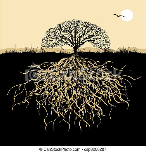 Tree silhouette with roots - csp3206287