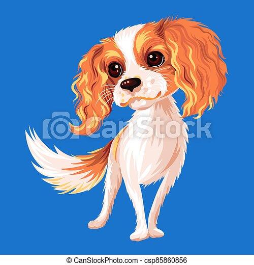 Vector dog Cavalier King Charles Spaniel - csp85860856