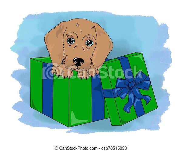 vector dog in box cute puppy - csp78515033