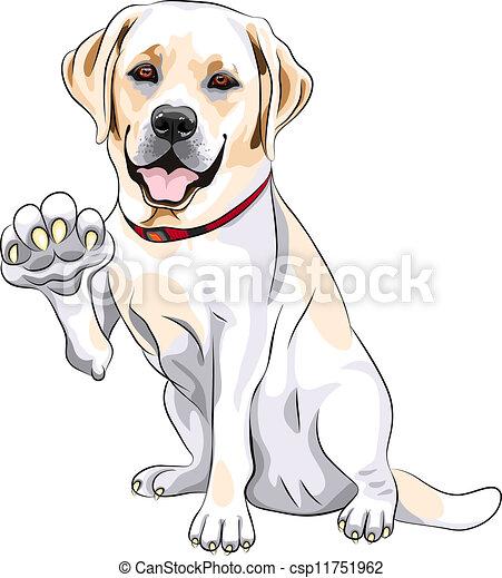 vector dog Labrador Retriever cheerful smiles and gives a paw - csp11751962