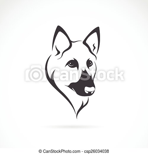 Vector image of an german shepherd face on white background - csp26034038