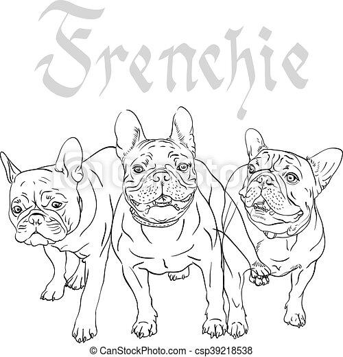 vector sketch domestic dog French Bulldog breed - csp39218538