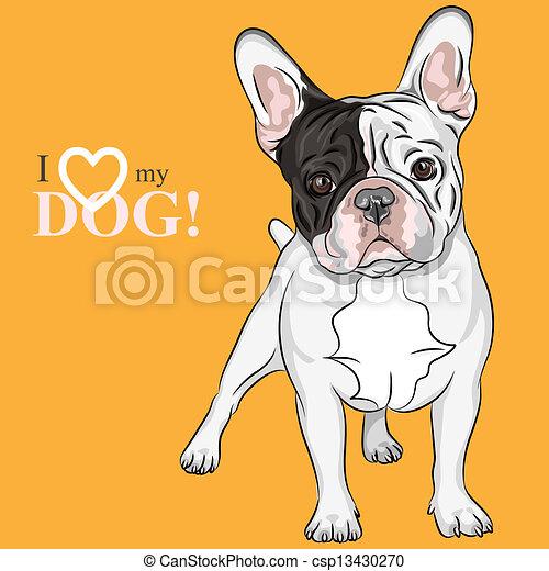 vector sketch domestic dog French Bulldog breed - csp13430270