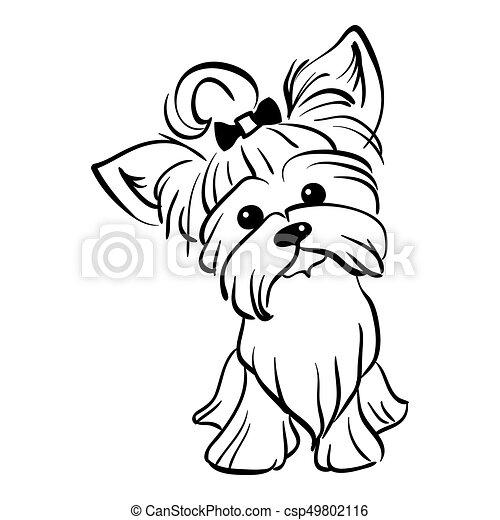 Vector sketch funny Yorkshire terrier dog sitting - csp49802116