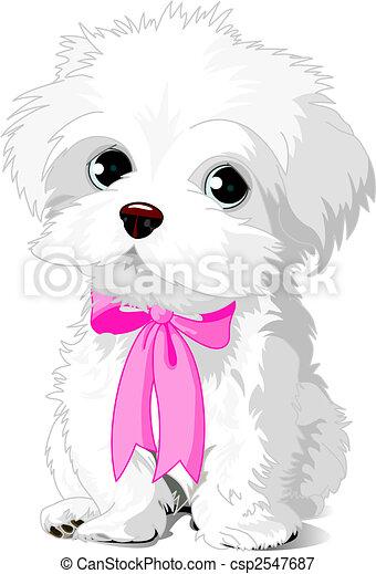 White Puppy - csp2547687