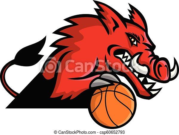 wild-boar-basketball-MASCOT - csp60652793