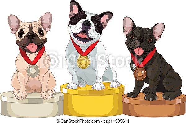 Winners of Dog competition - csp11505611