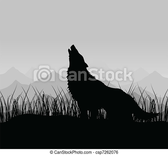Wolf in mountains - csp7262076