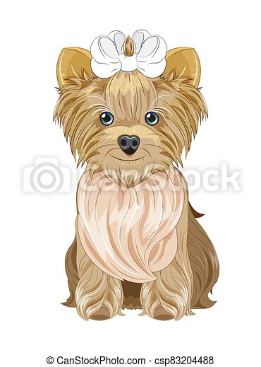 Yorkshire terrier dog - csp83204488