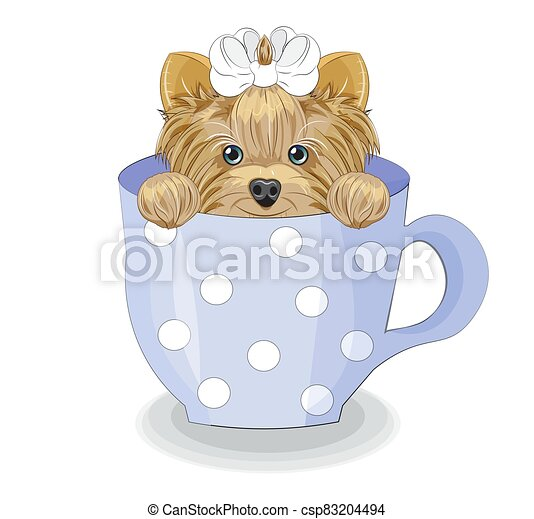 Yorkshire terrier dog in cup - csp83204494
