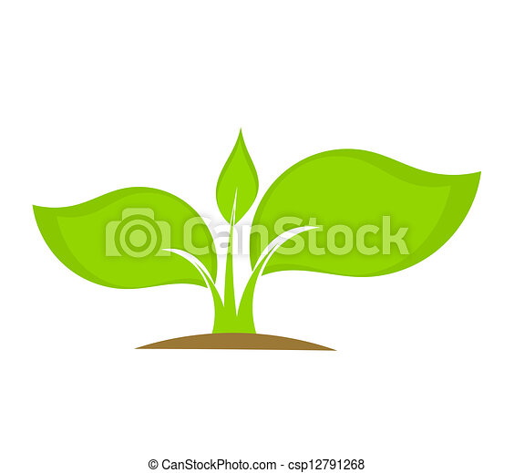 Young plant - csp12791268